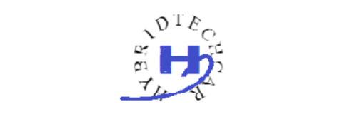 bearose-hybridtechcar-logo